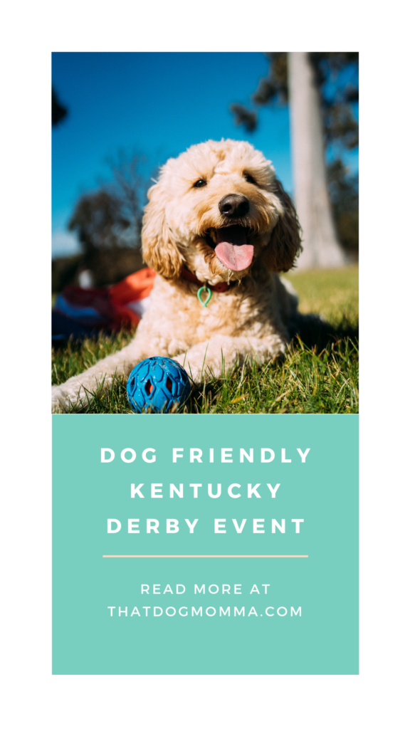 2019 Dog Friendly Kentucky Derby Event in Louisville KY